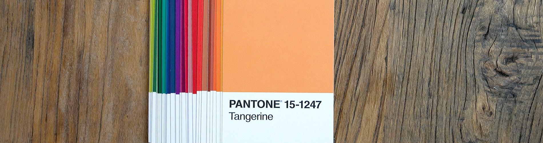 Pantone-portofolioopt